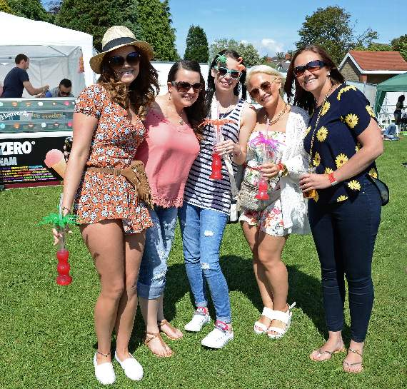 Weekend of fun, sun and music – as the GlastonBarry festival hits Romilly Park!